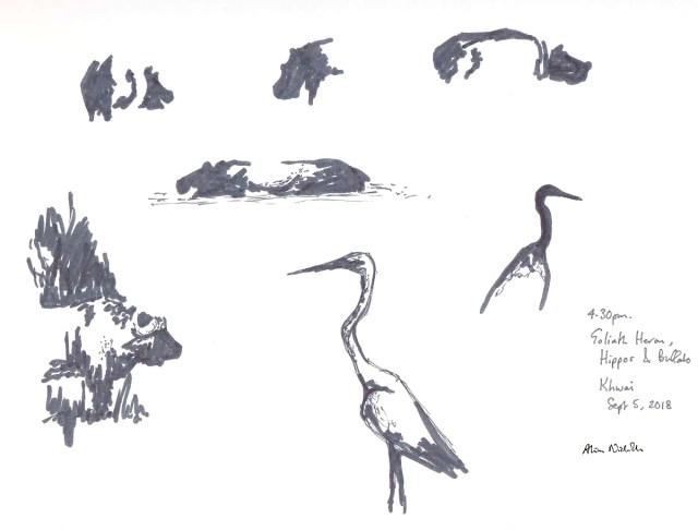 Hippo, Heron and Buffalo by Alison Nicholls