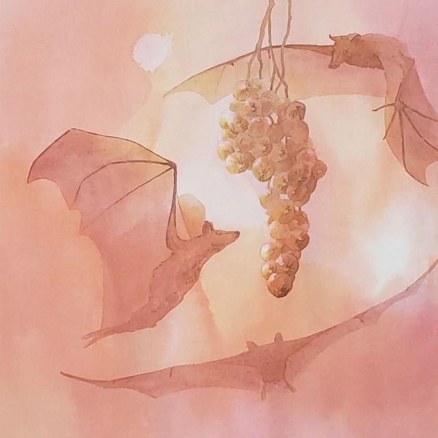 Painting by Alison Nicholls of Epomophorus bats, Kenyan fruit-eating bats.