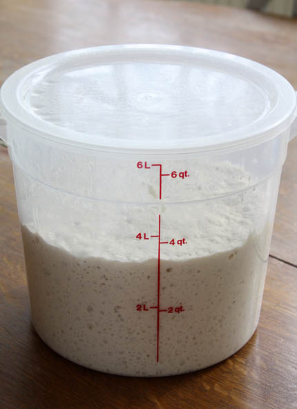 fresh-yeast-dough07