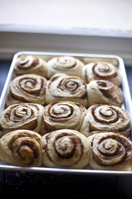 Cinnamon buns after an overnight rise | Artisan Bread in Five Minutes a Day
