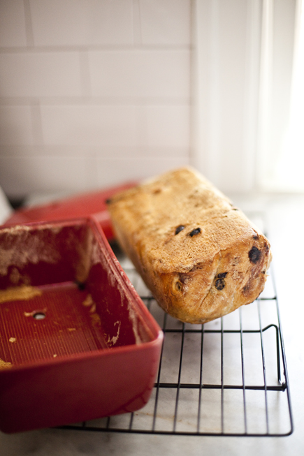Raisin Walnut Bread Turned Out of a Bread Pan | Artisan Bread in Five Minutes a Day
