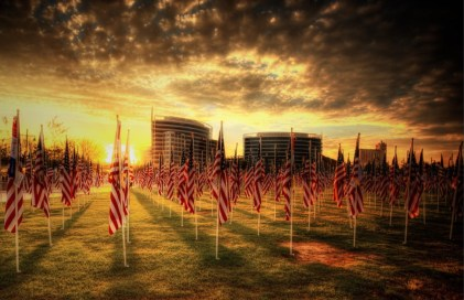 veterans photo exhibition at springfield art museum