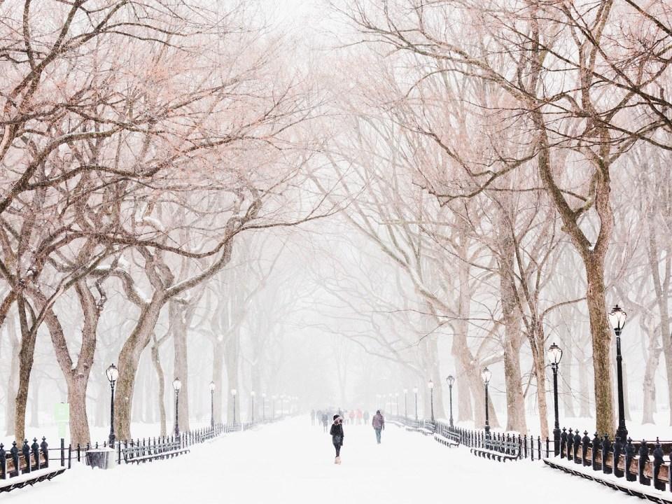 зимата в града е красива