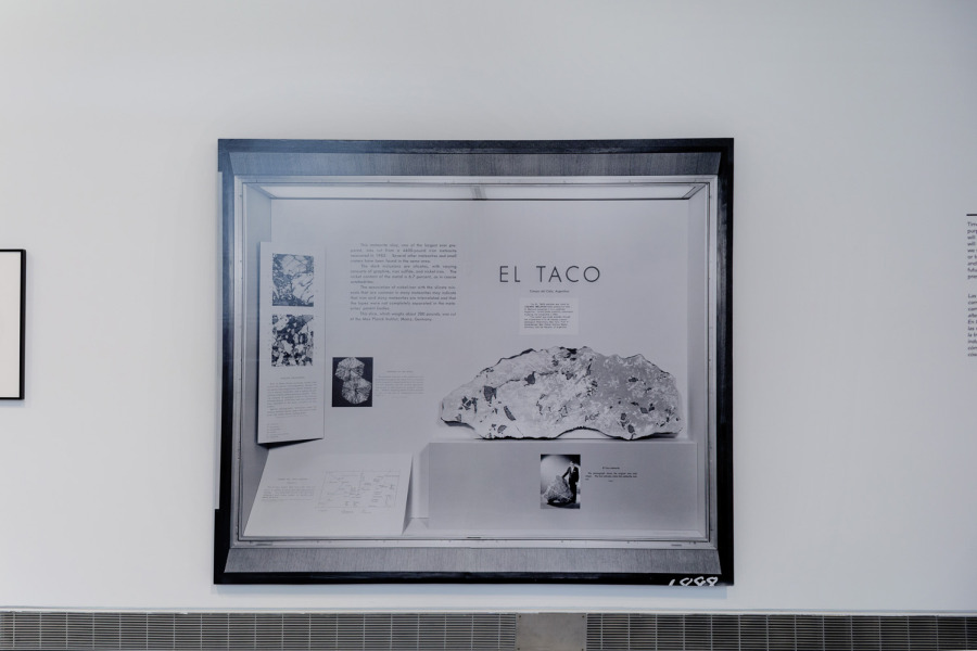 Faivovich & Goldberg at Mundos Alternos: Art and Science Fiction in the Americas. Exhibition view: Queens Museum, New York, 2019. Courtesy: Queens Museum