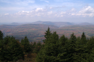 View from atop spruce Know, highest point in the Alleghenies