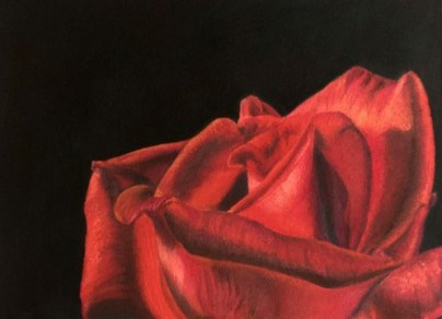 Pastel Rose Completed