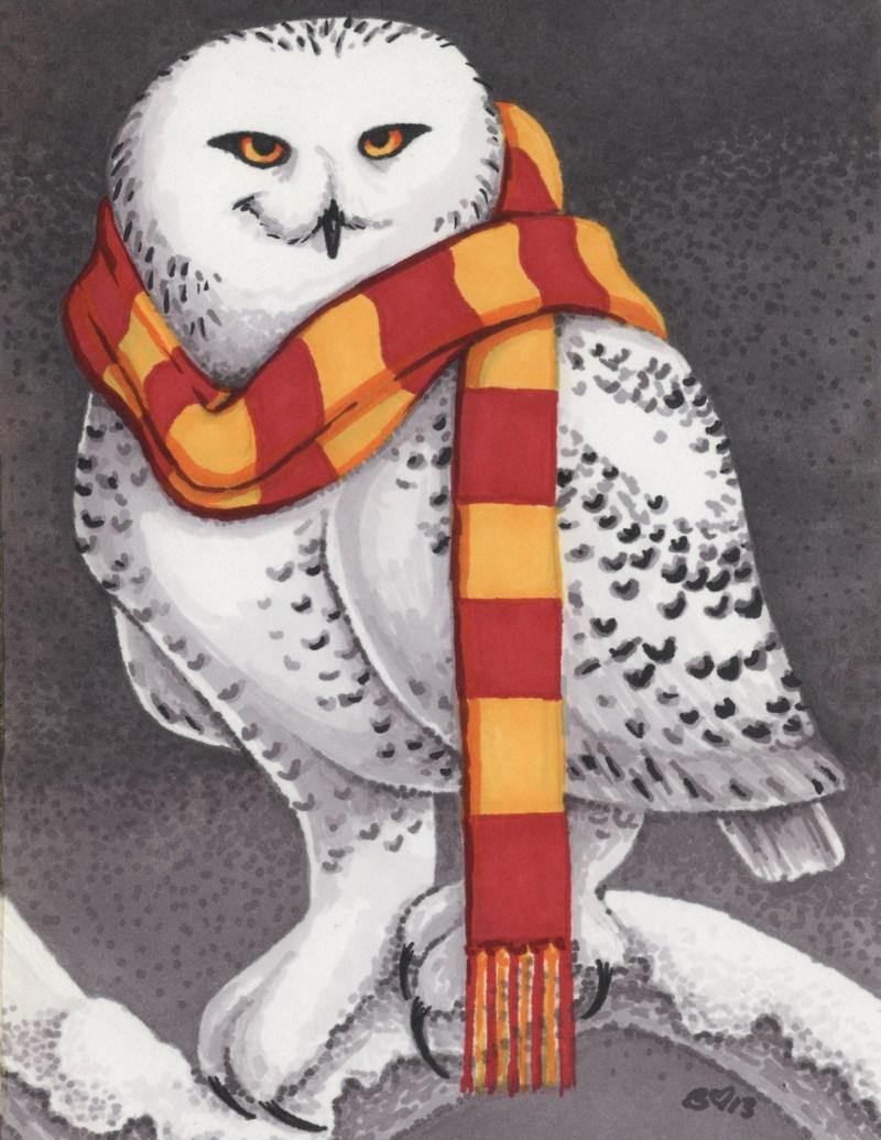 2013 Gryphindors Snowy Owl