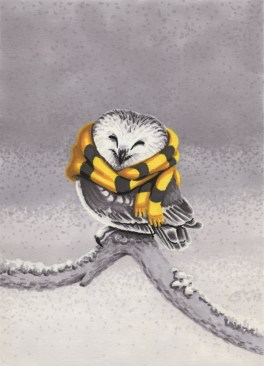 2013 Hufflepuffs Northern Saw Whet Owl