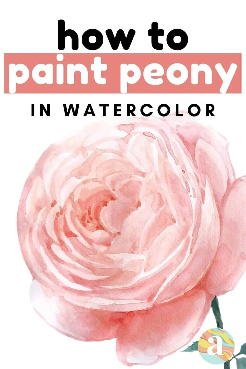 How to paint peony in watercolor