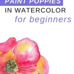 How to paint poppies in watercolor