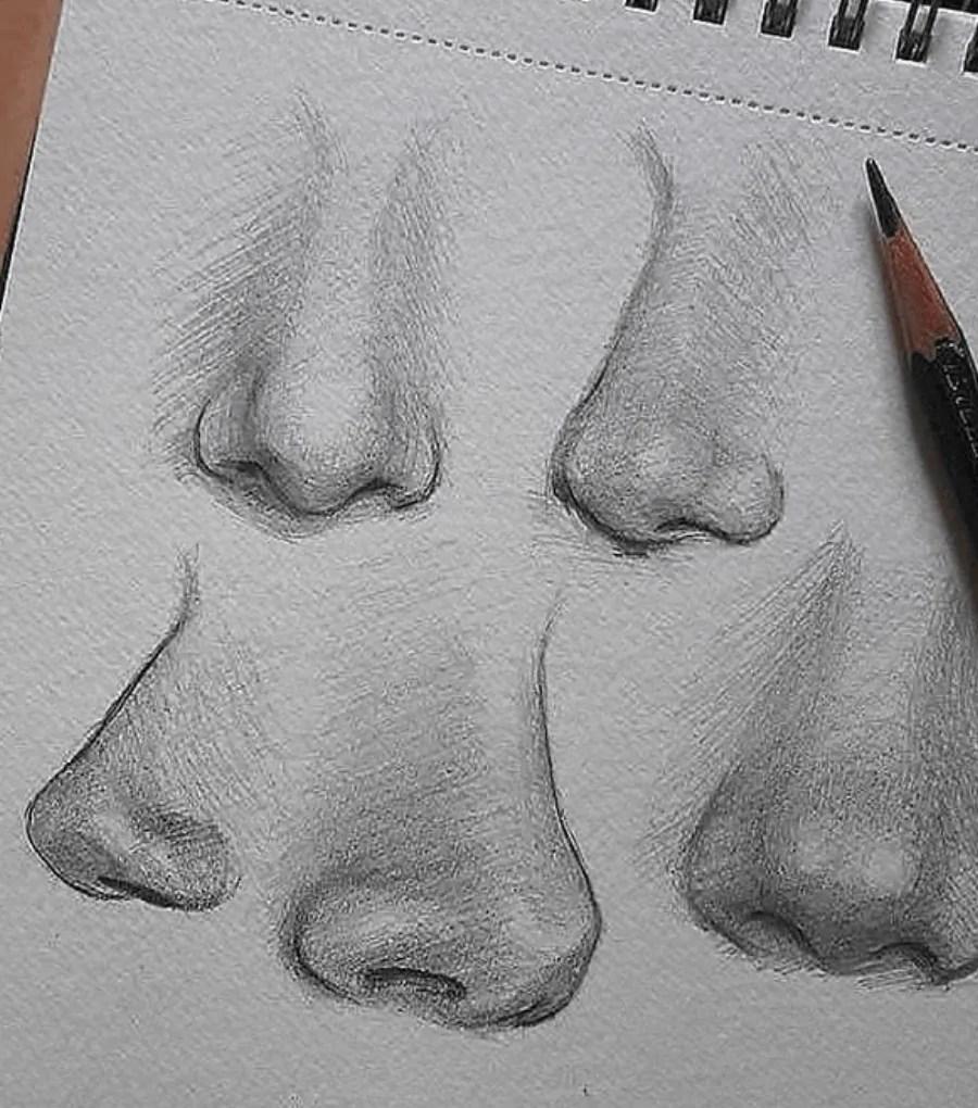 nose drawing pencil