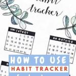 Habit Tracker Bullet Journal Ideas 5