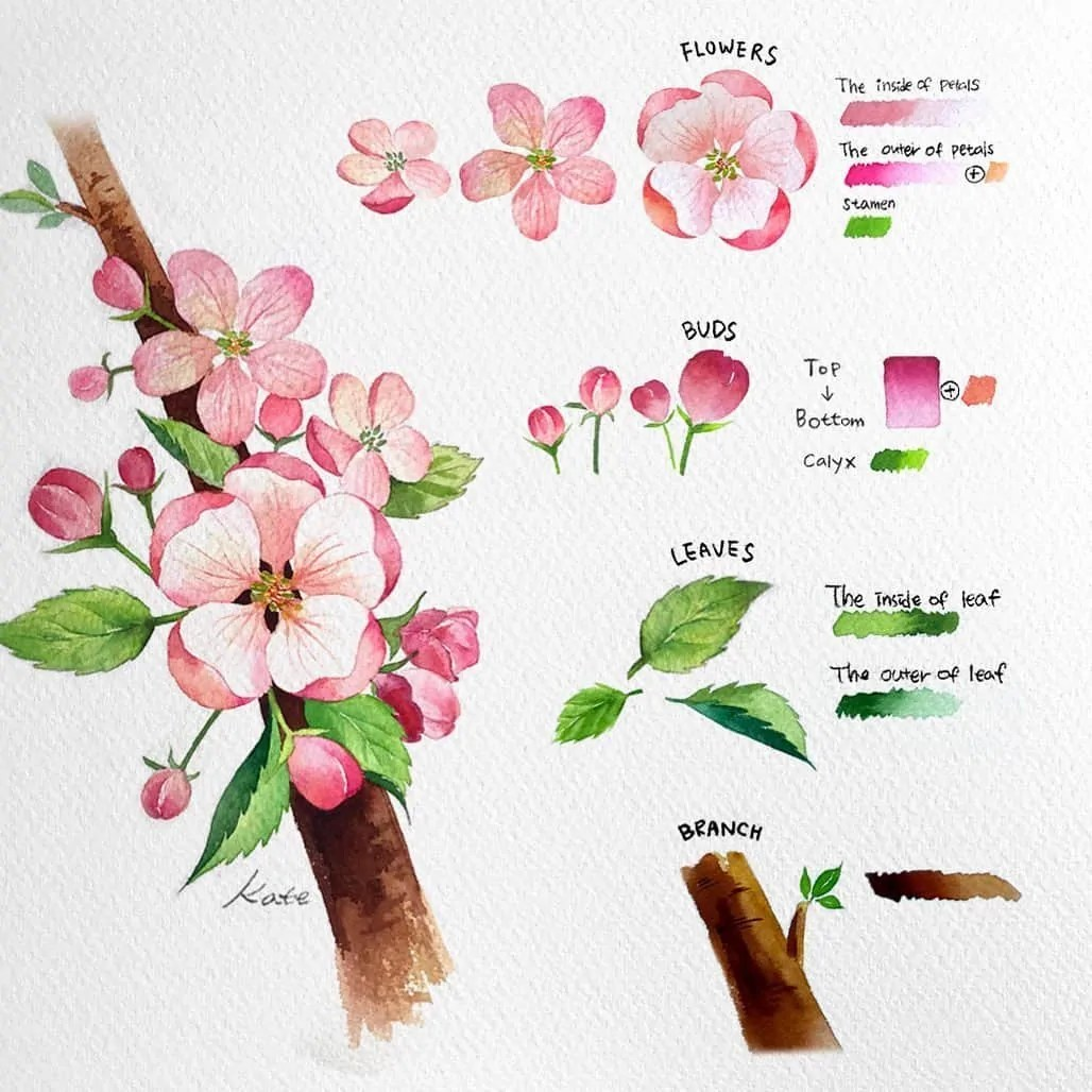 How to draw flowers for beginners? 89