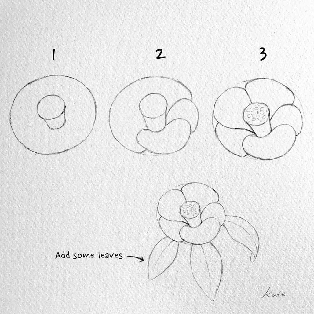 How to draw flowers for beginners? 111