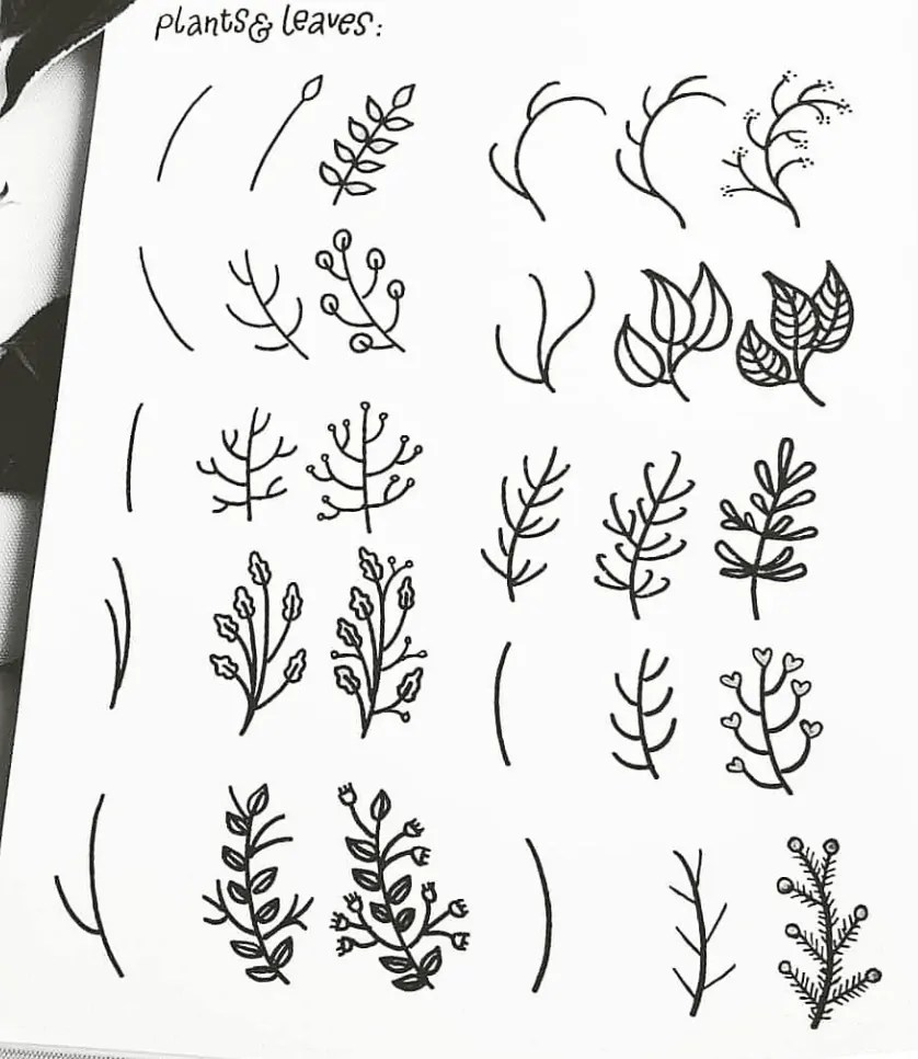 how to doodle leaves