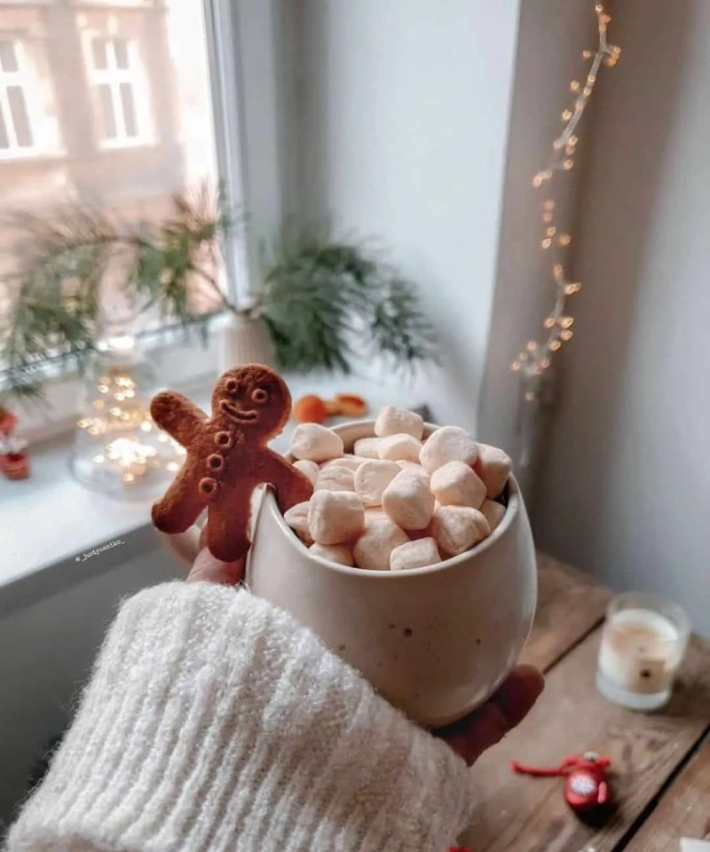 30 Christmas Aesthetic Images you must see: WARNING you will get Christmas mood INSTANTLY! 51