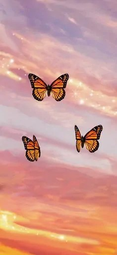Butterfly-Sunset-Aesthetic-iPhone-Case-Cover 5
