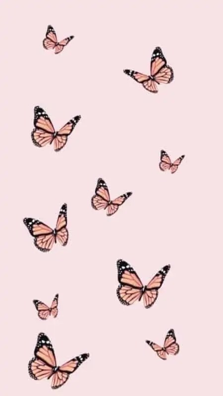 44-Aesthetic-Pink-Butterfly-iPhone-Wallpapers-HD 5