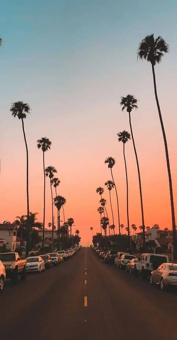 45-Free-Beautiful-Summer-Wallpapers-For-iPhone-1 5