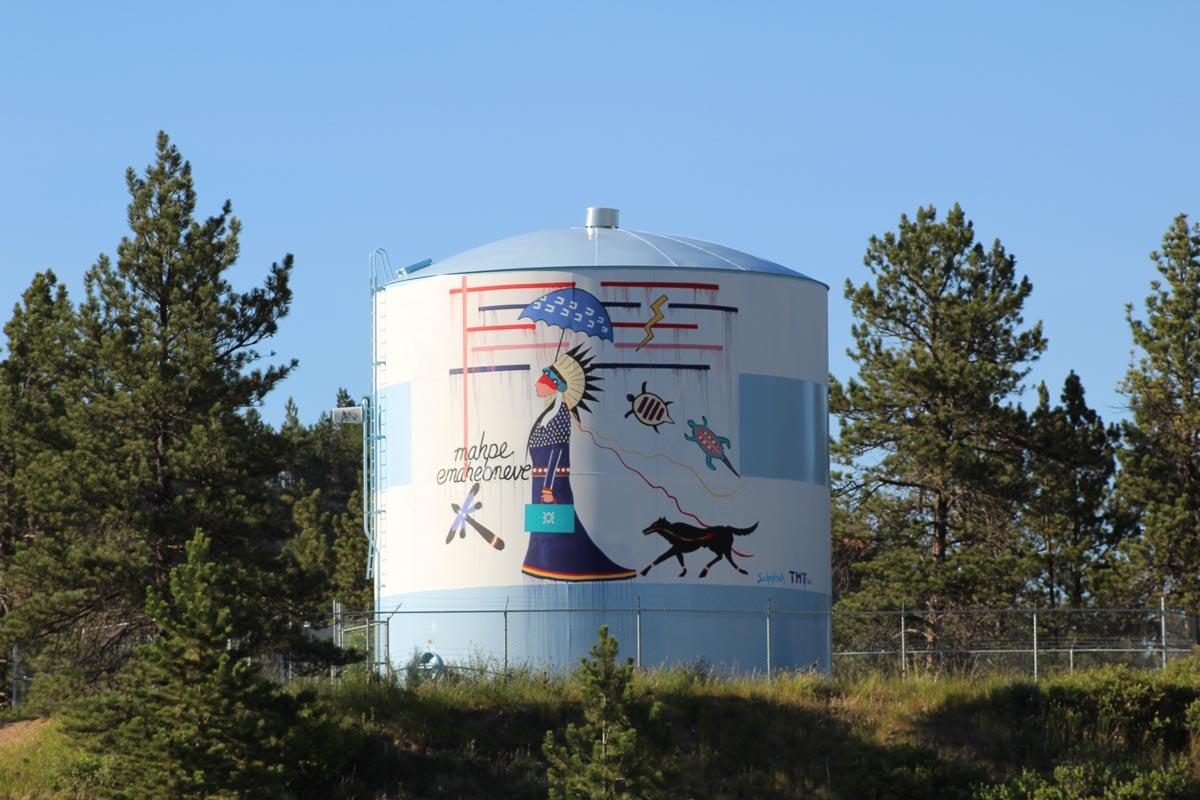 Cheyenne Water Protector. —James Temte