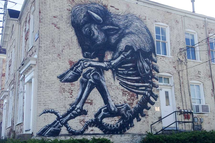 Buffalo mural by ROA