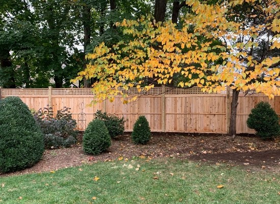 Square Lattice Wood Privacy Fence in a New Jersey Backyard