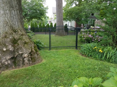 narrow spacing aluminum fence at a residential property with a single arch gate and a contemporary top