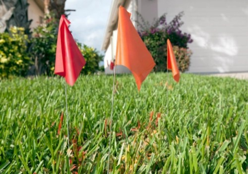Three red flags and spray painted grass indicating underground utility lines