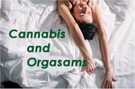 cannabis and orgasms