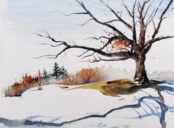 Hopeful for Spring-Golf Course Oak