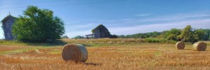 A photo of abandoned farm building with freshly baled hay