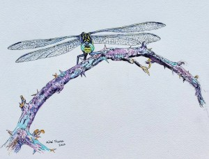 A mixed media painting of a dragonfly on a bramble