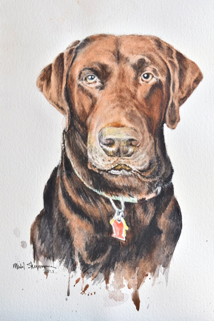 A watercolor portrait of a chocolate lab named Gus