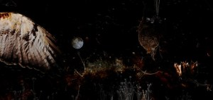 dere_02-moon lite