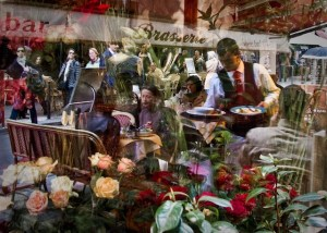 klienman_Flower Shop Window Reflection
