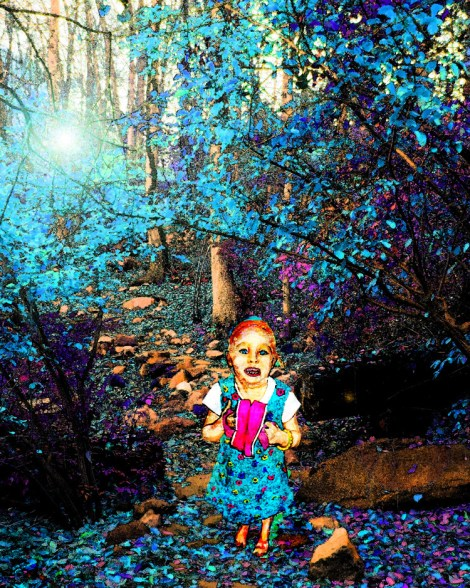 Title:Lost in the woods Medium:digital photo manipulation Size:16 x 20