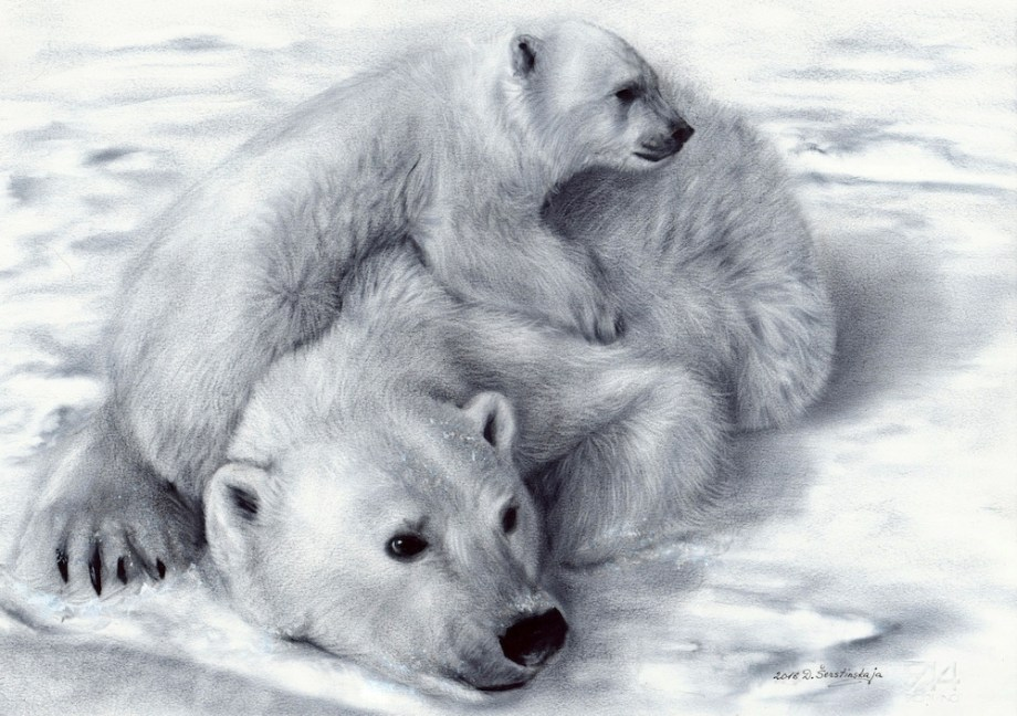 "Title:Polar Bears Medium: Oil on paper. Dry brush technique Size: 19""x13"""