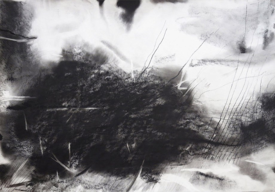 Title:untitled Medium:charcoal on paper Size:74 x 104 cms