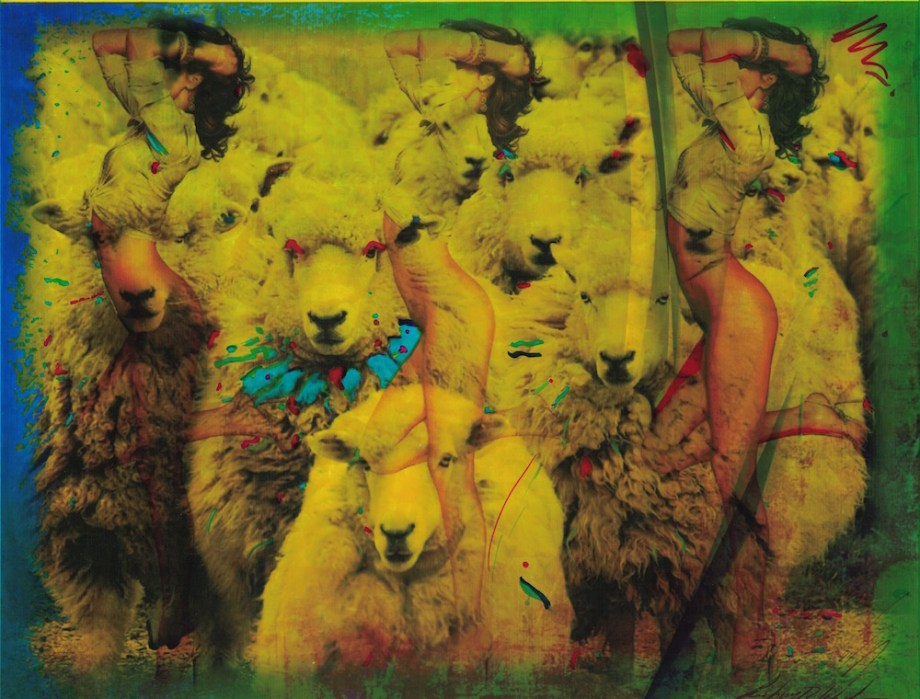 Title:Wolves in Sheep's Clothing Medium:watercolor mixed media Size:17x19