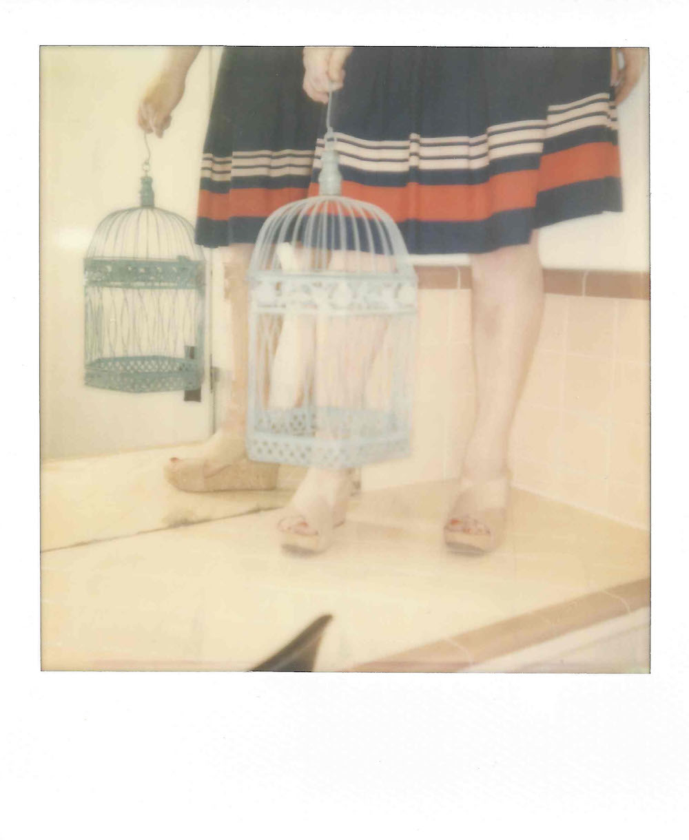 Title: Without a Bird 04 Medium: Instant Film Size: 3.5 x 4 inches