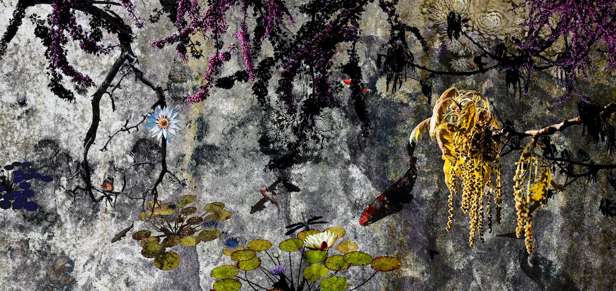 Title: eves garden Medium: digital/photography Size: 8.5x17