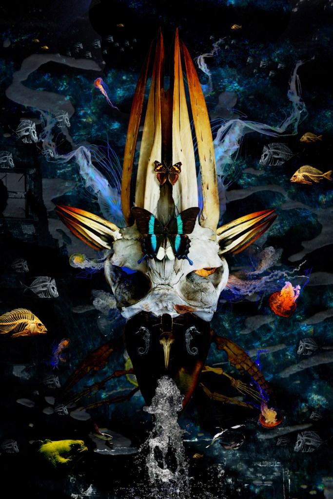 Title:return of the king Medium:digital Size:18x12