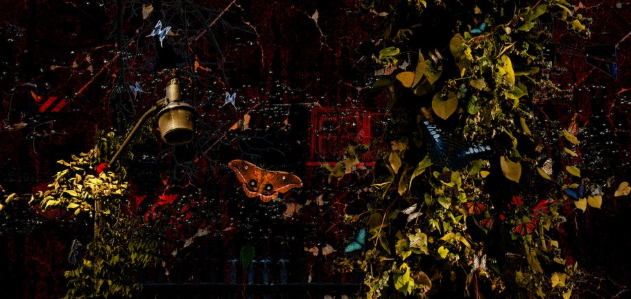 Title:The seeker Medium:digital/photography Size:8.5x17
