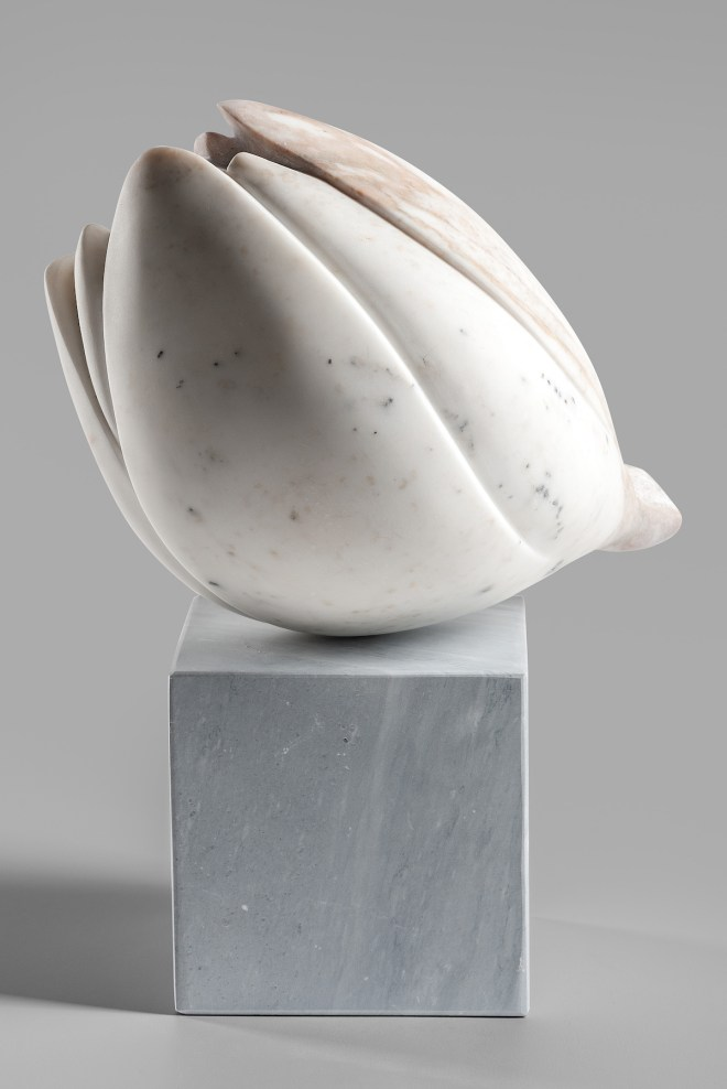 Title Flora Medium Calacatta Marble, base is Bardiglio Size 15 x 8 x 13 inches, 38 x 20.3 x 30.5 cm with base