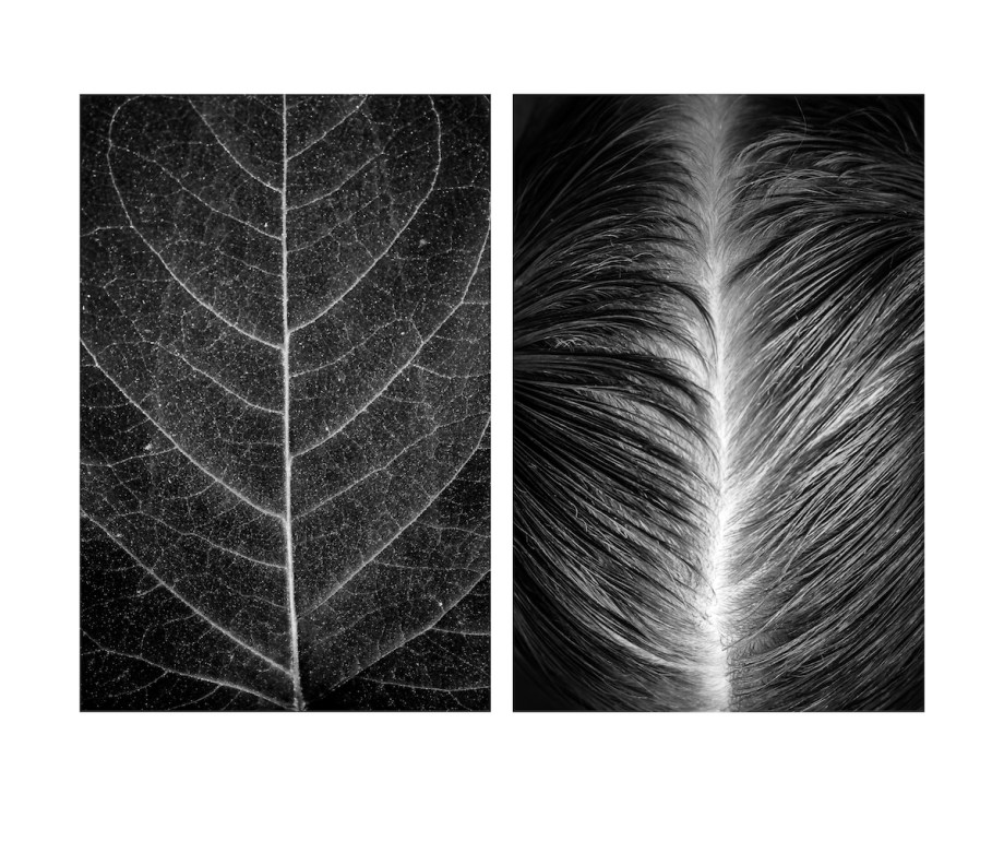 Title Diptych Number 3. Medium photography Size 33 x 28 cm