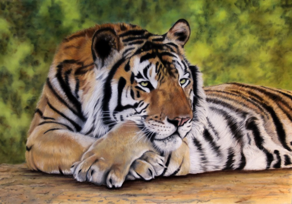 "Chillin Medium pastels on velour Size 18"" x 26"""