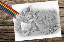 catanddog_8x10_coloring_onwood
