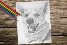 dogsitting_2_coloringpage-on-wood