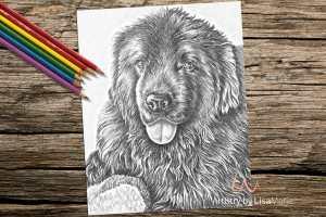 dogwithfuzzytoy_coloringpage-on-wood