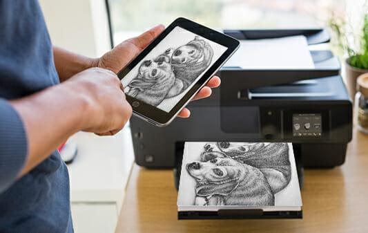 twobeaglesresting_8x10_coloring_printing